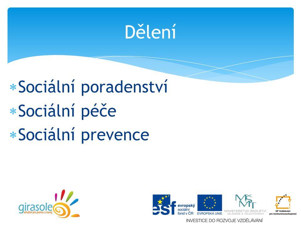 Dělení Sociální poradenství Sociální péče Sociální prevence