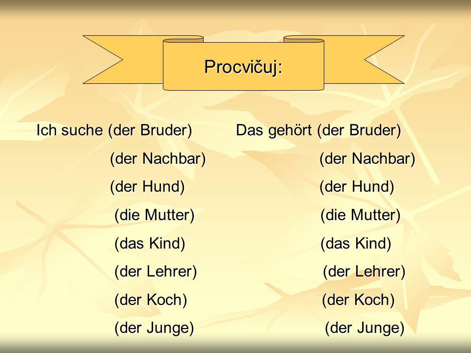 Procvičuj: Ich suche (der Bruder) Das gehört (der Bruder)