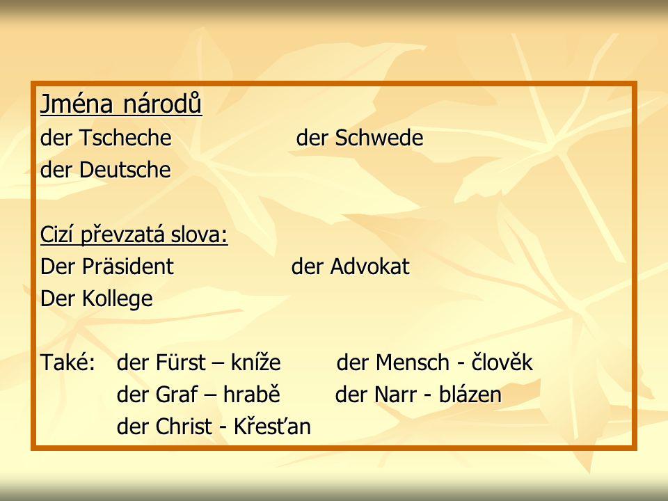 Jména národů der Tscheche der Schwede der Deutsche
