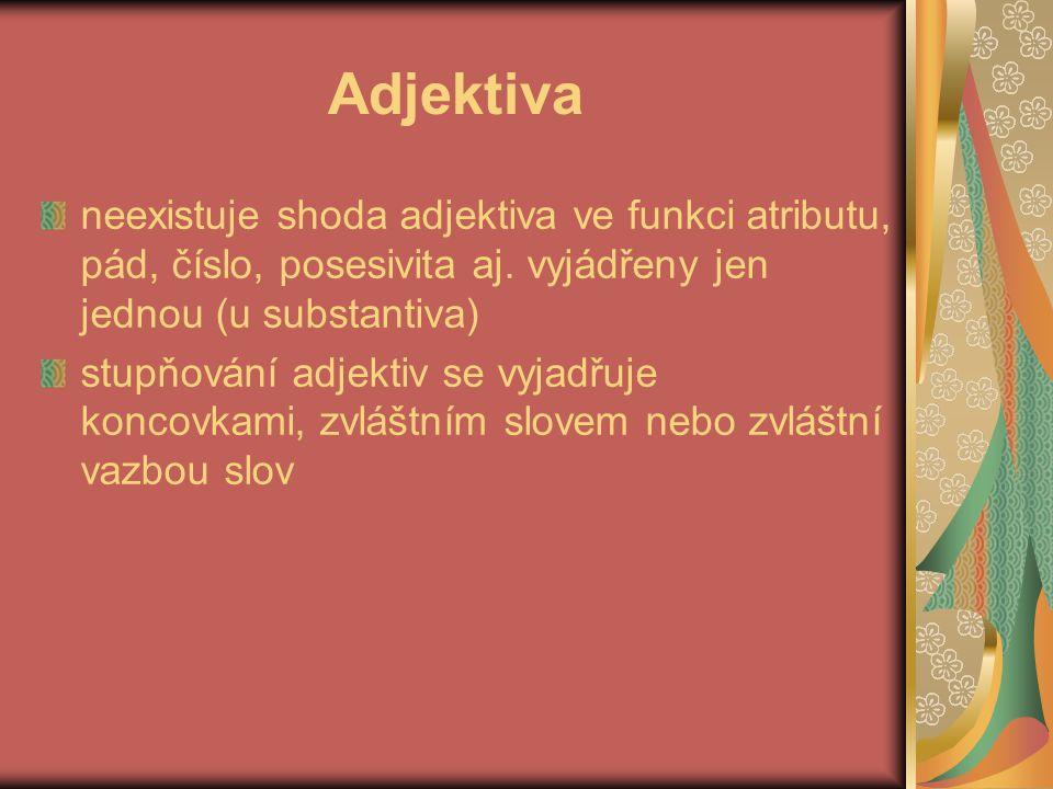 Adjektiva neexistuje shoda adjektiva ve funkci atributu, pád, číslo, posesivita aj. vyjádřeny jen jednou (u substantiva)
