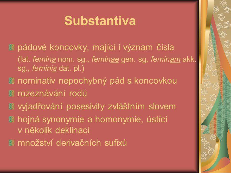Substantiva pádové koncovky, mající i význam čísla