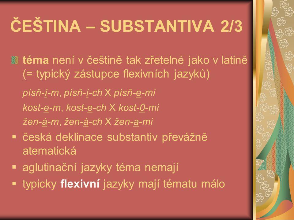 ČEŠTINA – SUBSTANTIVA 2/3