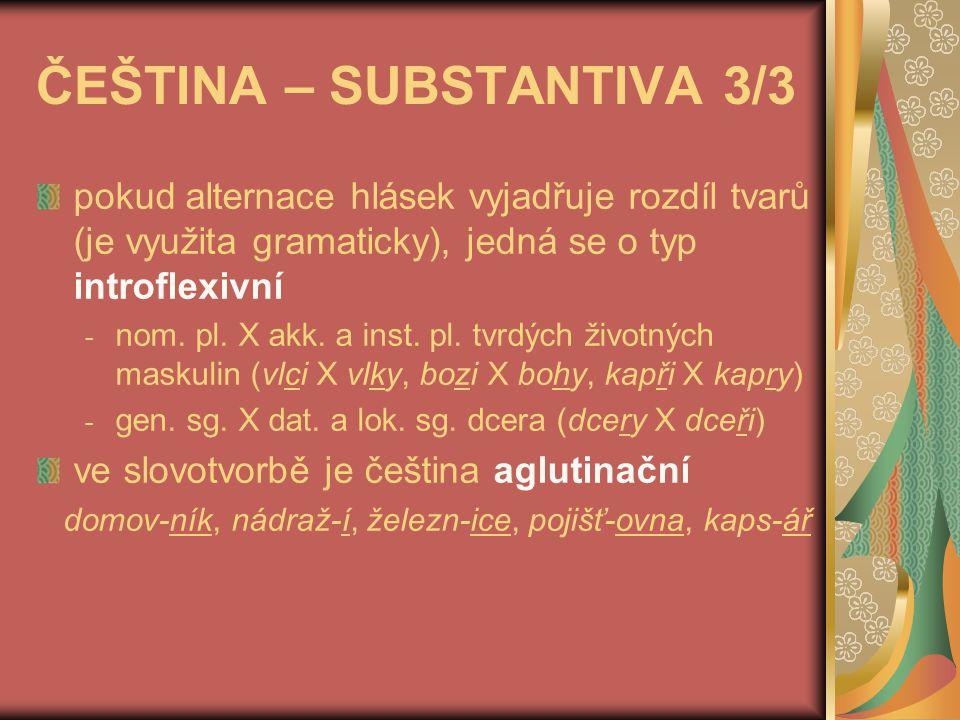 ČEŠTINA – SUBSTANTIVA 3/3