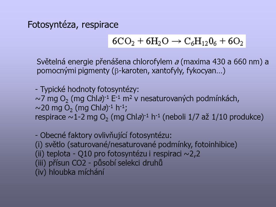 Fotosyntéza, respirace