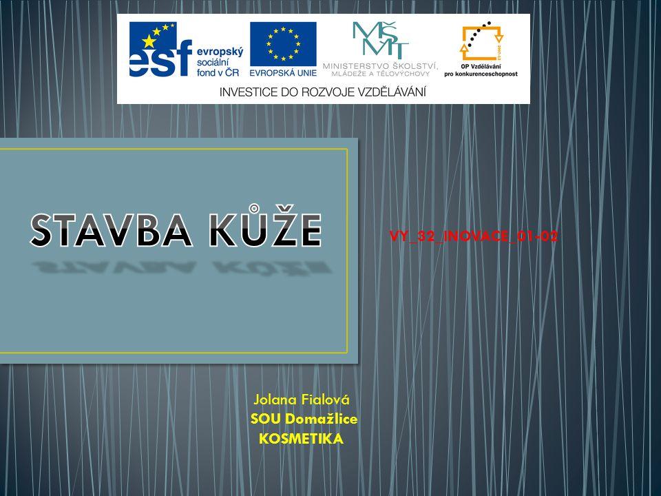 STAVBA KŮŽE VY_32_INOVACE_01-02 Jolana Fialová SOU Domažlice KOSMETIKA