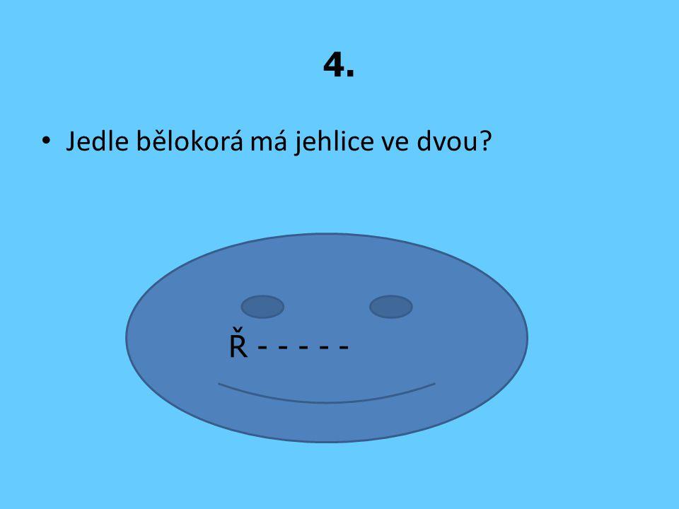 4. Jedle bělokorá má jehlice ve dvou Ř - - - - -
