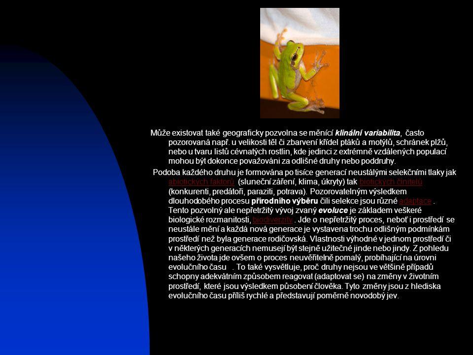 Může existovat také geograficky pozvolna se měnící klinální variabilita, často pozorovaná např. u velikosti těl či zbarvení křídel ptáků a motýlů, schránek plžů, nebo u tvaru listů cévnatých rostlin, kde jedinci z extrémně vzdálených populací mohou být dokonce považováni za odlišné druhy nebo poddruhy.