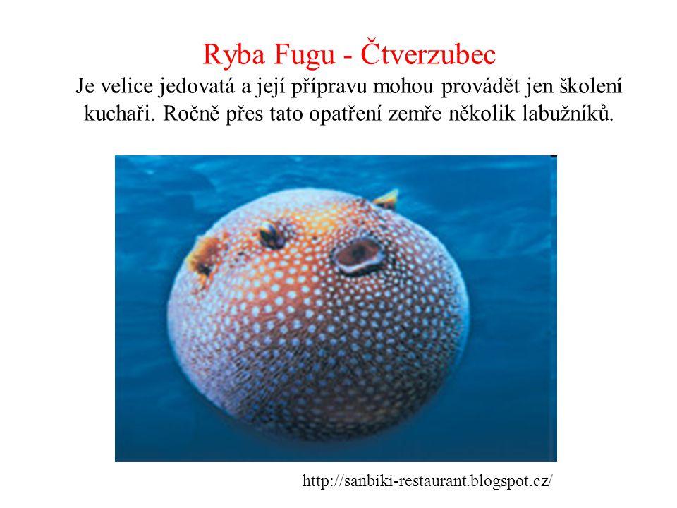 Ryba Fugu - Čtverzubec Je velice jedovatá a její přípravu mohou provádět jen školení kuchaři. Ročně přes tato opatření zemře několik labužníků.