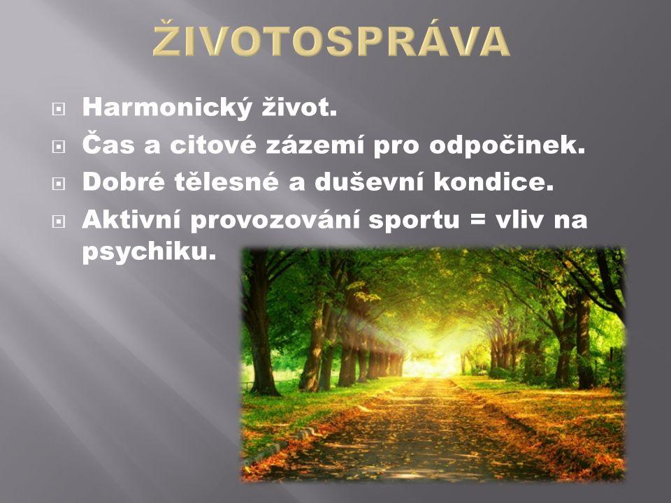 ŽIVOTOSPRÁVA Harmonický život. Čas a citové zázemí pro odpočinek.
