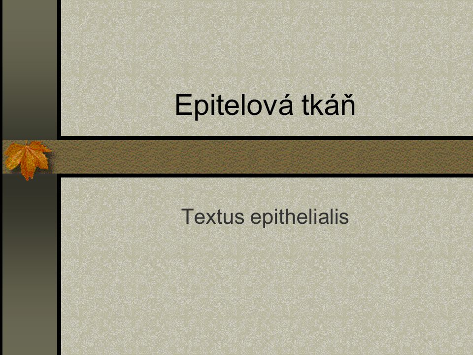 Epitelová tkáň Textus epithelialis