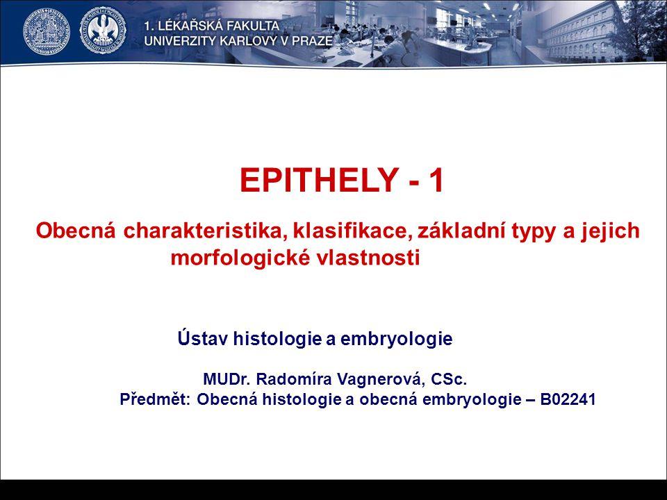 EPITHELY - 1 Obecná charakteristika, klasifikace, základní typy a jejich. morfologické vlastnosti.