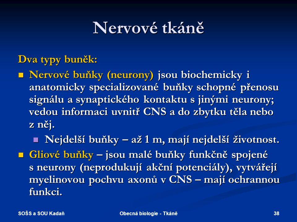 Obecná biologie - Tkáně