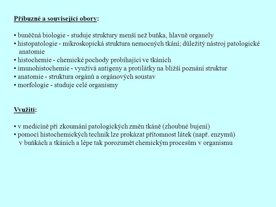 Příbuzné a související obory: