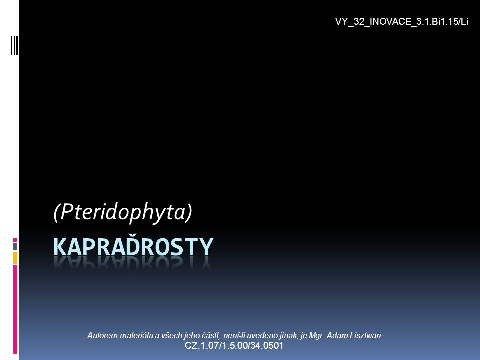 Kapraďrosty (Pteridophyta) VY_32_INOVACE_3.1.Bi1.15/Li