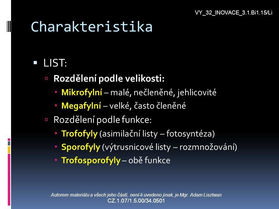 Charakteristika LIST: Rozdělení podle velikosti: