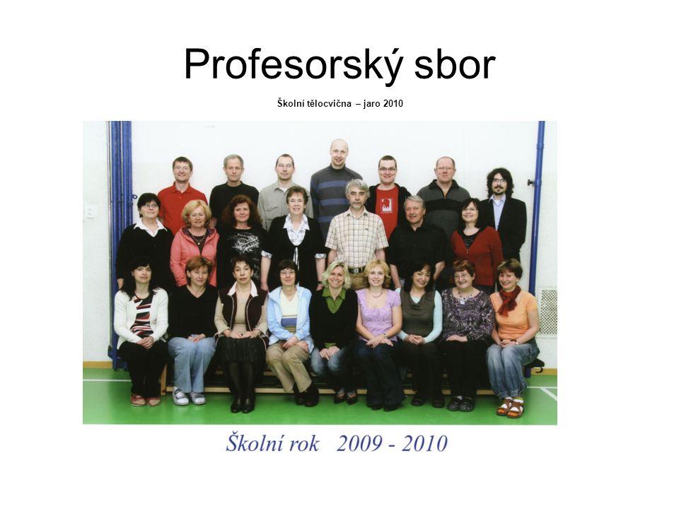 Školní tělocvična – jaro 2010