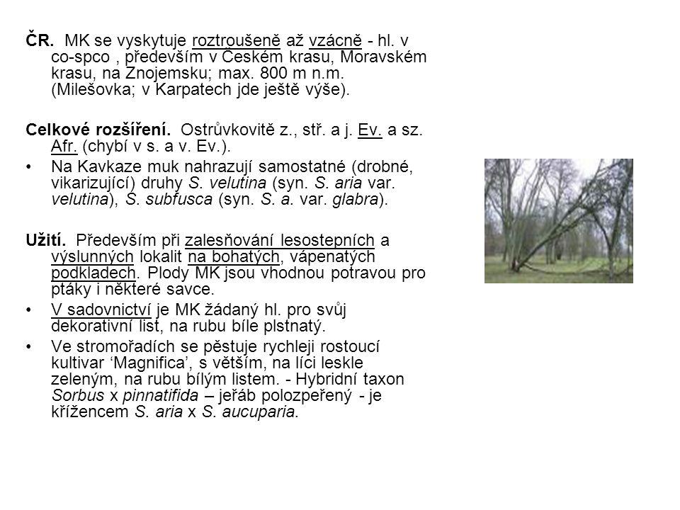 ČR. MK se vyskytuje roztroušeně až vzácně - hl