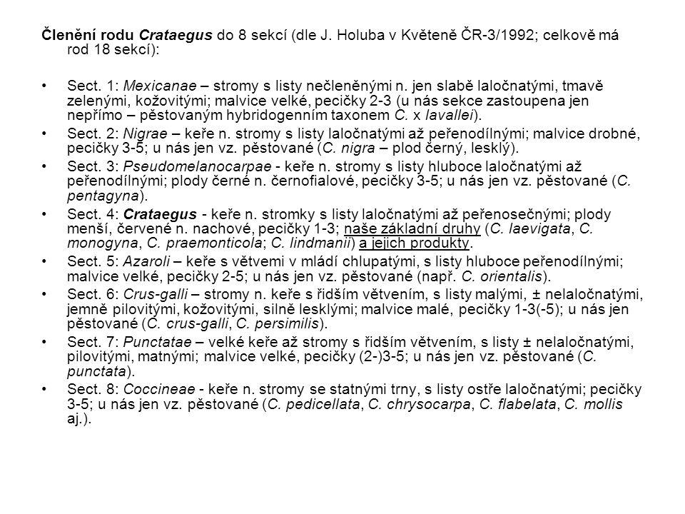 Členění rodu Crataegus do 8 sekcí (dle J