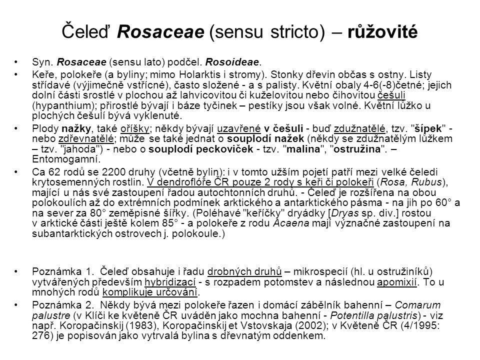 Čeleď Rosaceae (sensu stricto) – růžovité
