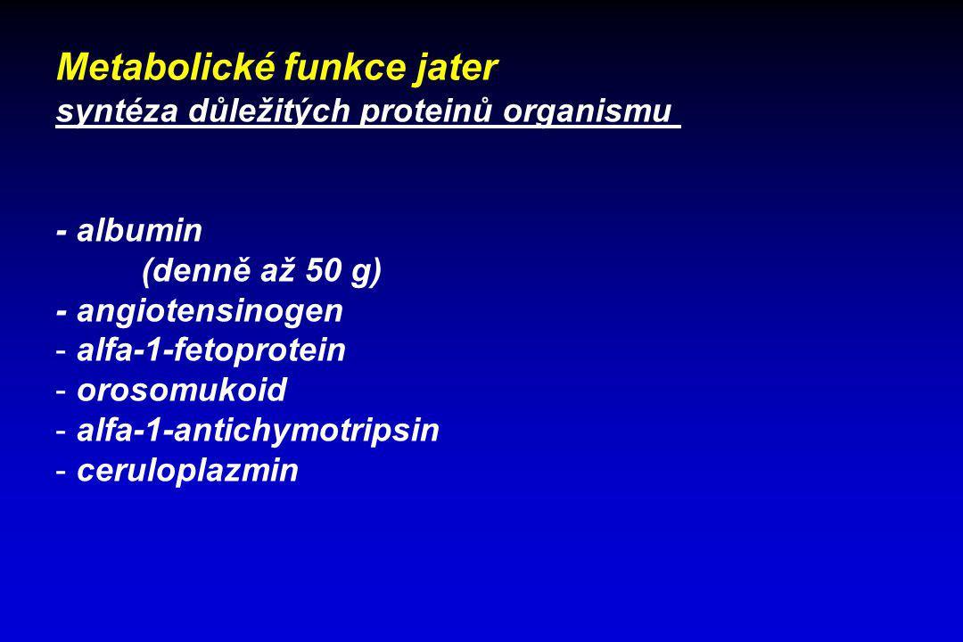 Metabolické funkce jater