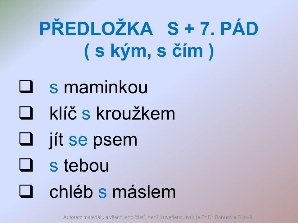 PŘEDLOŽKA S + 7. PÁD ( s kým, s čím )