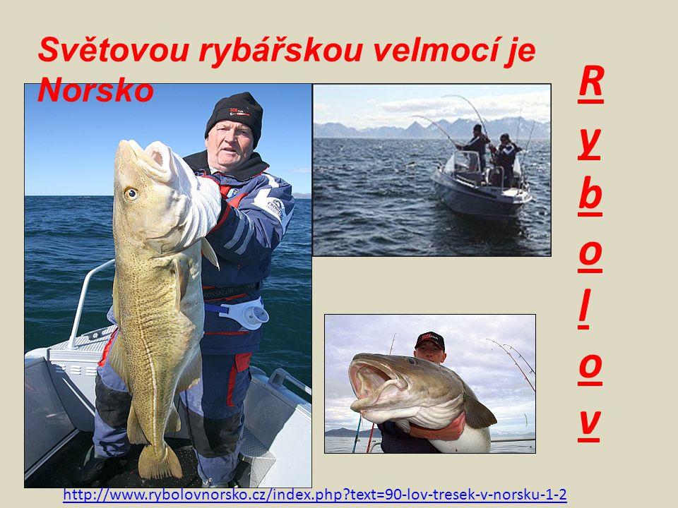 Rybolov Světovou rybářskou velmocí je Norsko