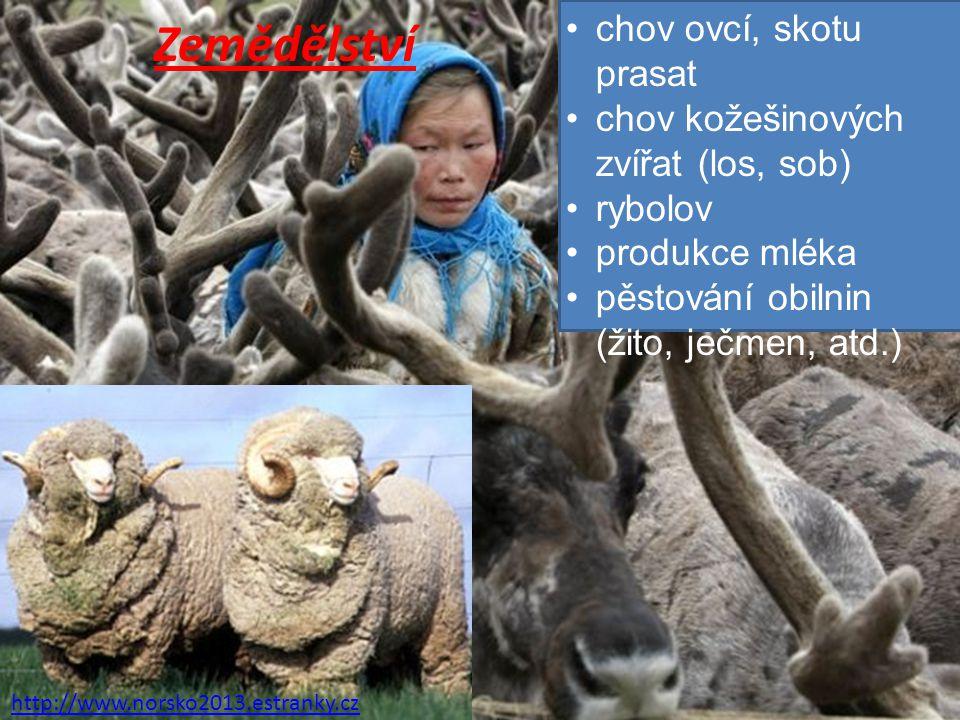 Zemědělství chov ovcí, skotu prasat