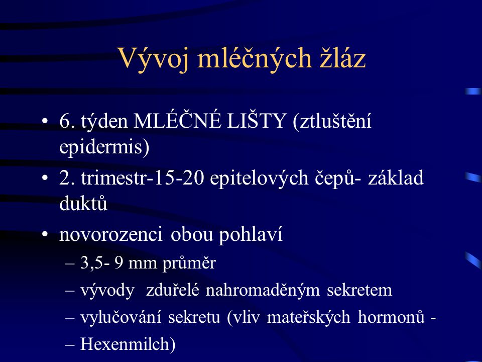 Vývoj mléčných žláz 6. týden MLÉČNÉ LIŠTY (ztluštění epidermis)