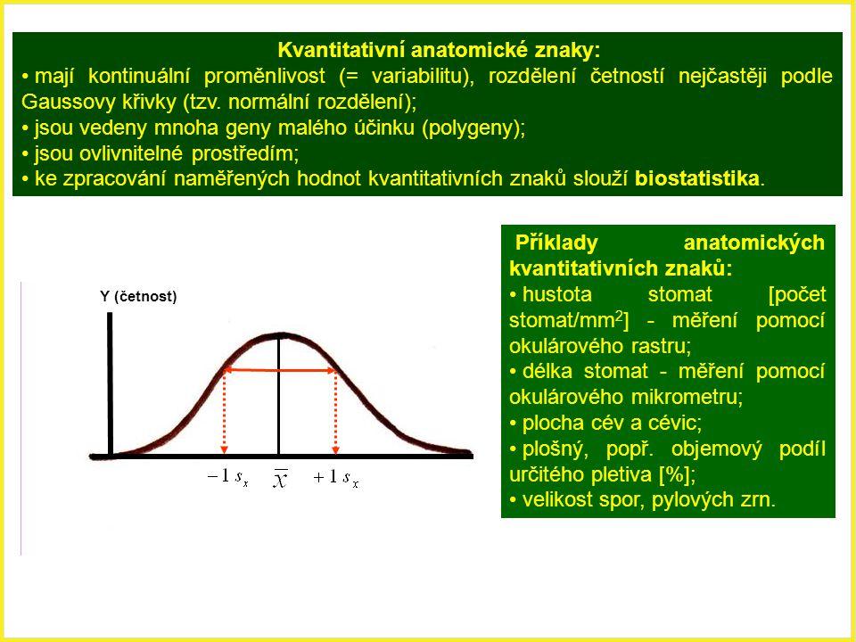 Kvantitativní anatomické znaky: