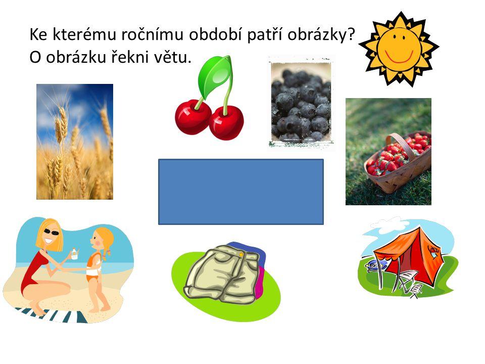 Ke kterému ročnímu období patří obrázky O obrázku řekni větu.