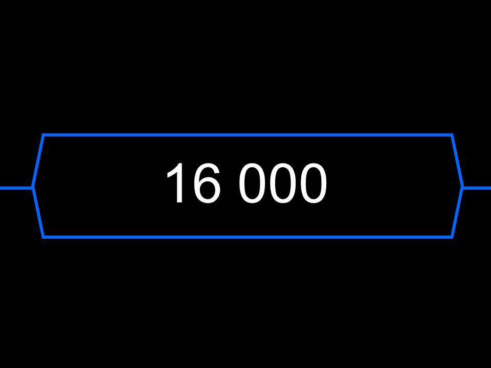 16 000