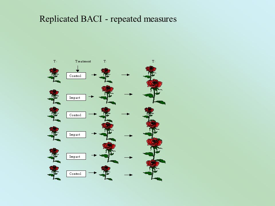 Replicated BACI - repeated measures