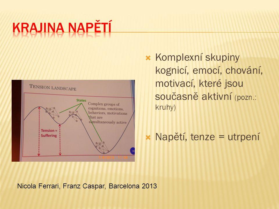 Krajina napětí Komplexní skupiny kognicí, emocí, chování, motivací, které jsou současně aktivní (pozn.: kruhy)