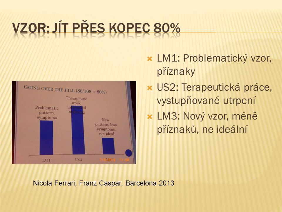 Vzor: Jít přes kopec 80% LM1: Problematický vzor, příznaky