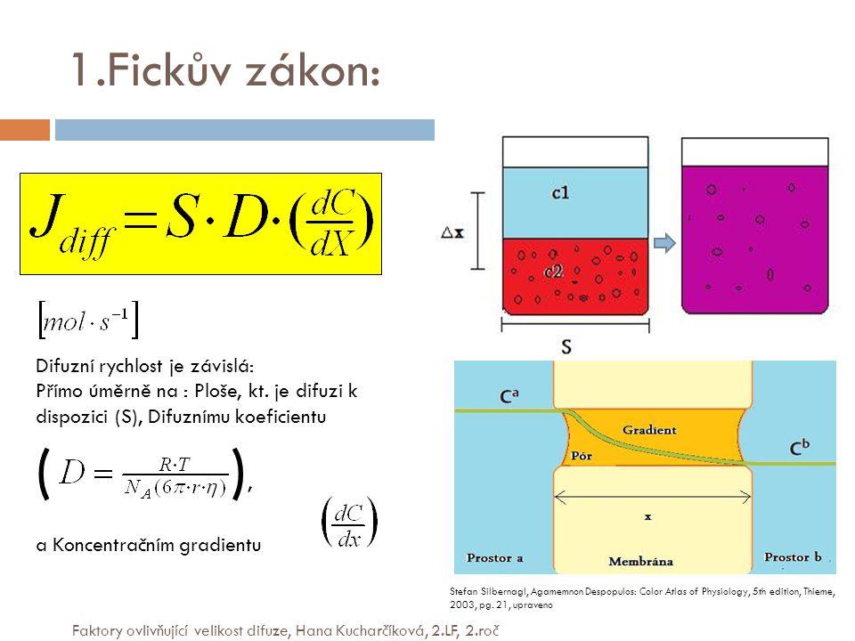 ( ), 1.Fickův zákon: Difuzní rychlost je závislá: