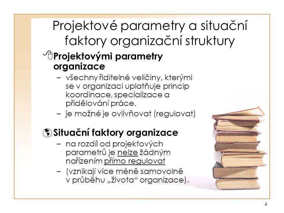 Projektové parametry a situační faktory organizační struktury