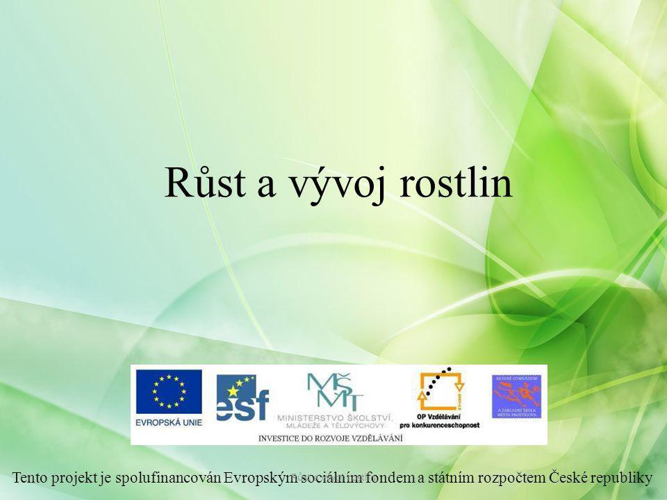 Růst a vývoj rostlin Tento projekt je spolufinancován Evropským sociálním fondem a státním rozpočtem České republiky.