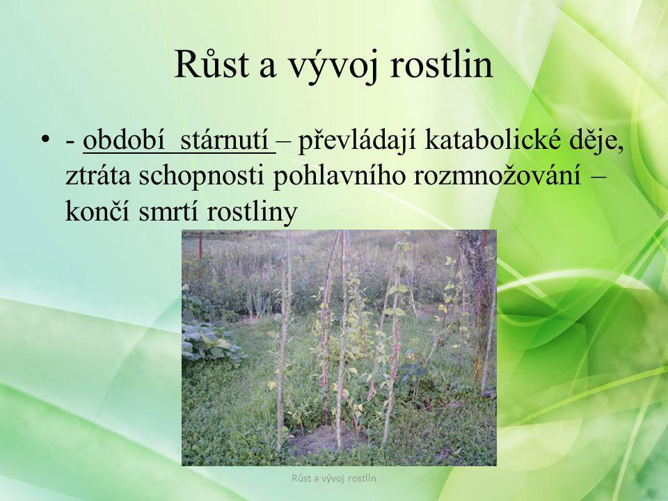 Růst a vývoj rostlin - období stárnutí – převládají katabolické děje, ztráta schopnosti pohlavního rozmnožování – končí smrtí rostliny.
