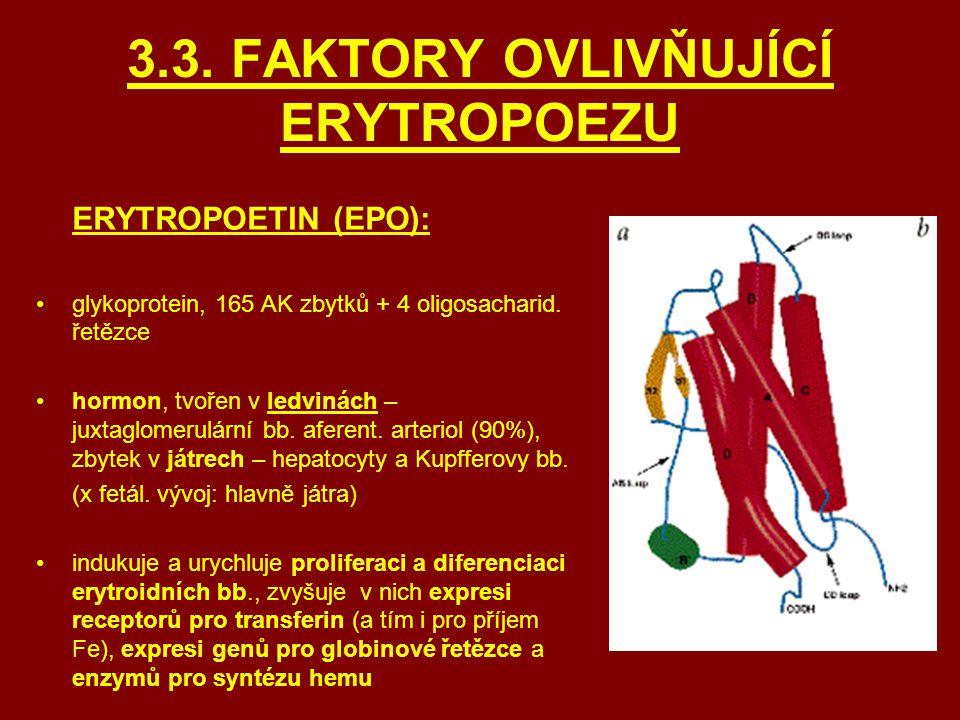 3.3. FAKTORY OVLIVŇUJÍCÍ ERYTROPOEZU
