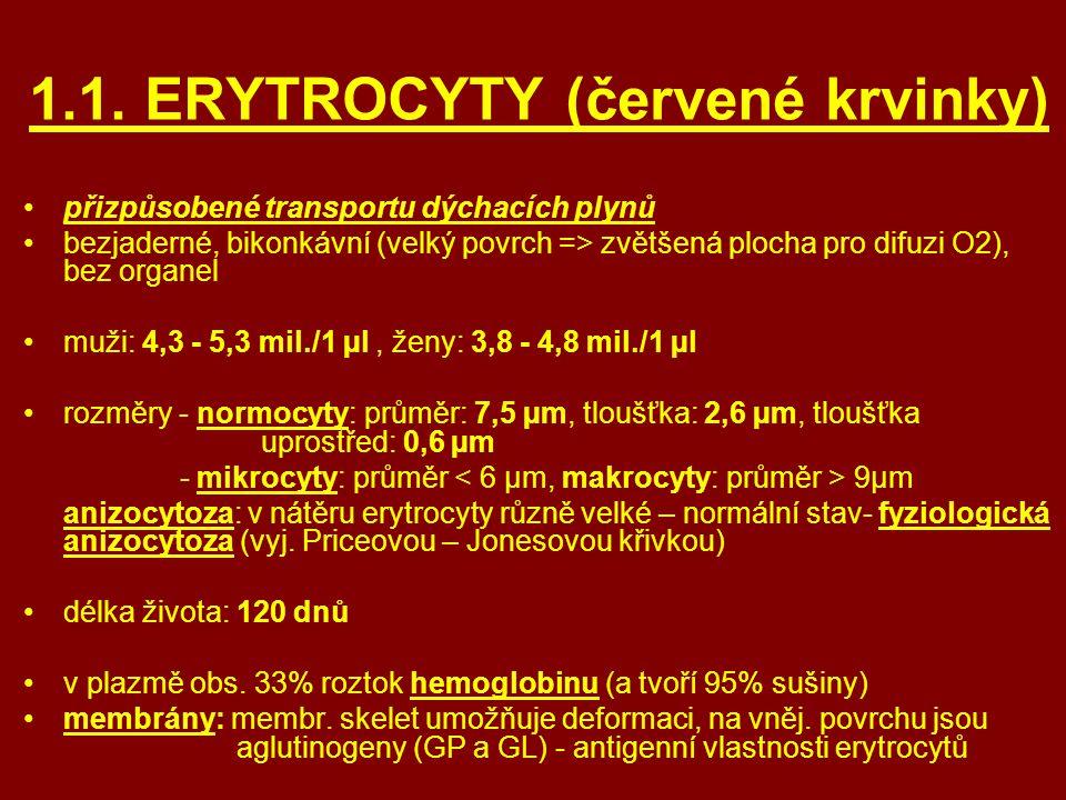 1.1. ERYTROCYTY (červené krvinky)