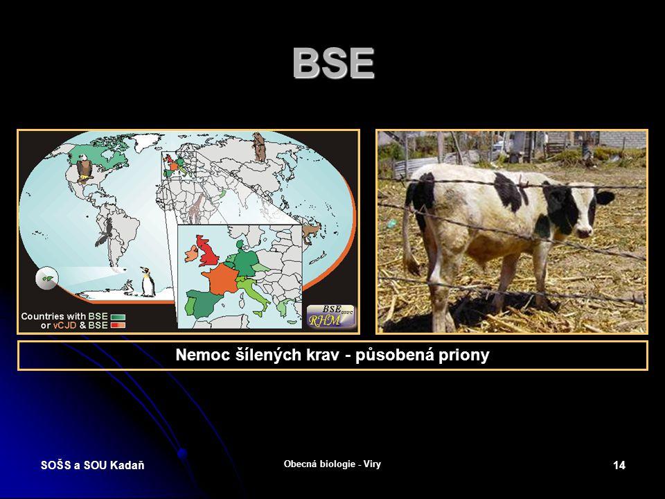 Nemoc šílených krav - působená priony