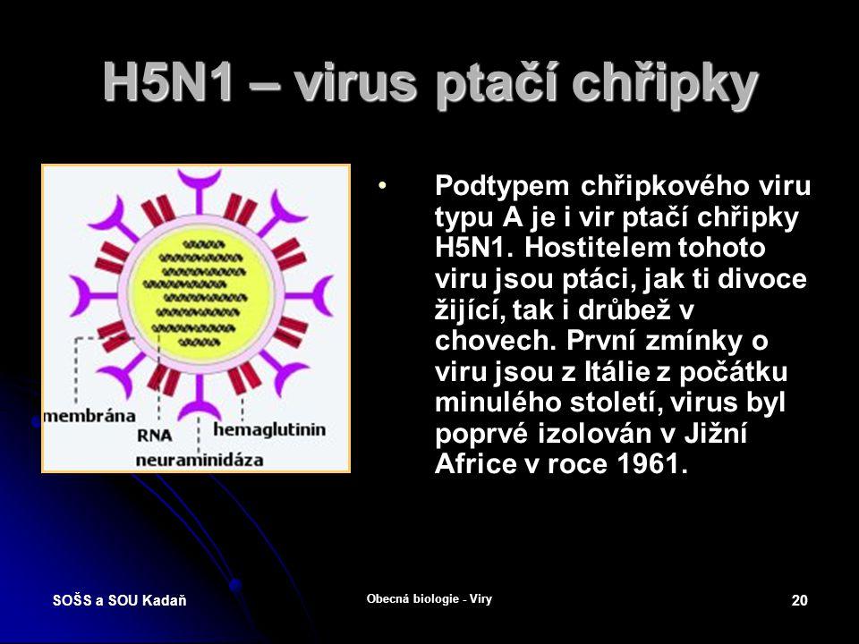 H5N1 – virus ptačí chřipky