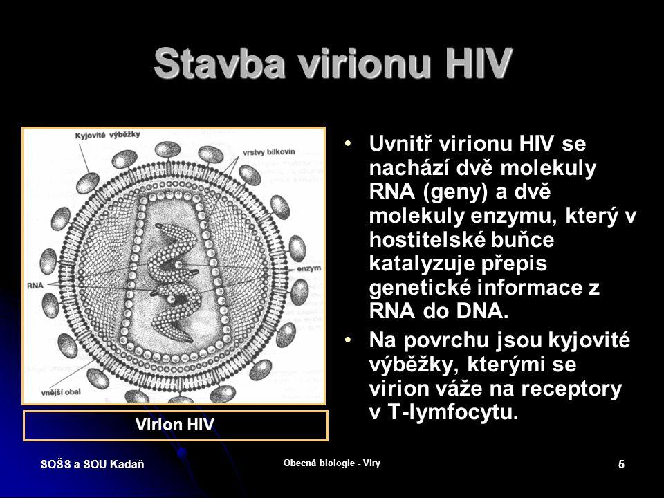 Stavba virionu HIV