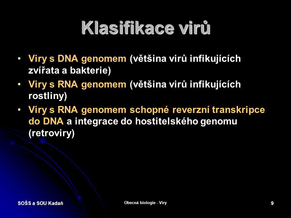 Klasifikace virů Viry s DNA genomem (většina virů infikujících zvířata a bakterie) Viry s RNA genomem (většina virů infikujících rostliny)