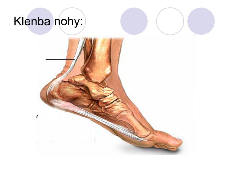 Klenba nohy: