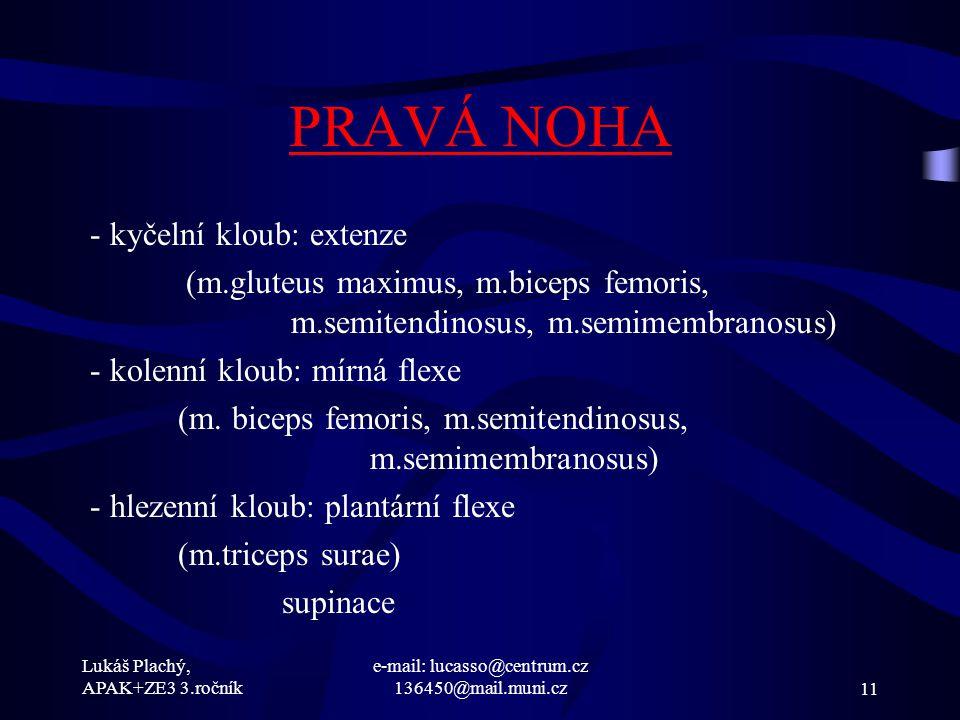e-mail: lucasso@centrum.cz 136450@mail.muni.cz