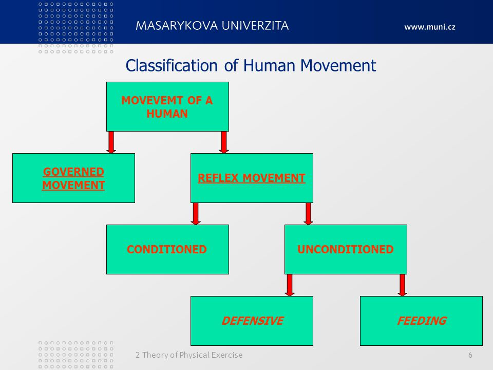 Classification of Human Movement
