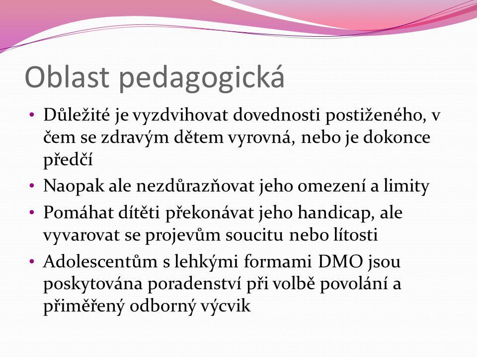 Oblast pedagogická Důležité je vyzdvihovat dovednosti postiženého, v čem se zdravým dětem vyrovná, nebo je dokonce předčí.