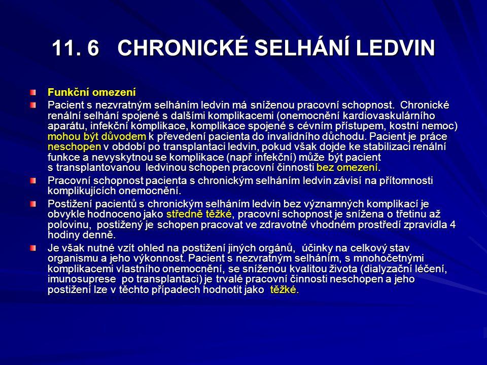 11. 6 CHRONICKÉ SELHÁNÍ LEDVIN