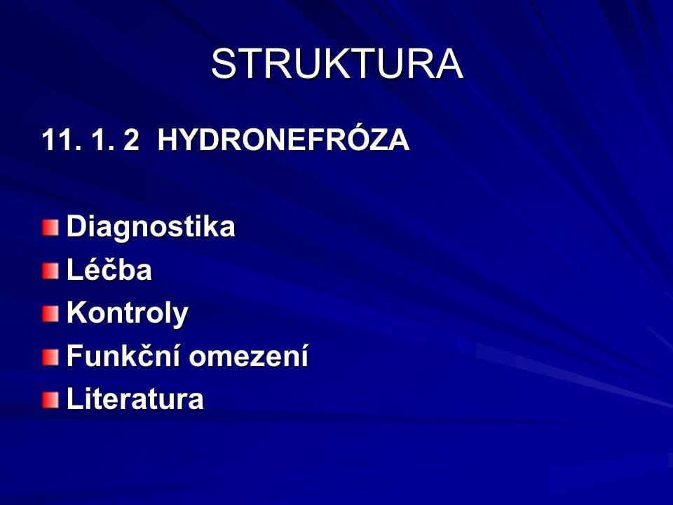 STRUKTURA 11. 1. 2 HYDRONEFRÓZA Diagnostika Léčba Kontroly